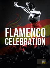 """Female Flamenco dancer and title of show """"Flamenco Celebration"""""""