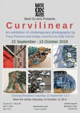 Curvilinear Exhibition - Contemporary Photography & Unique Ceramics
