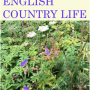 Music at The Limes concert - English Country Life